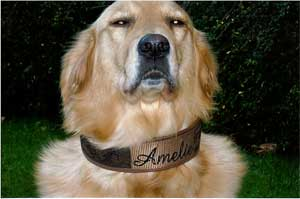 Halsband Amelie